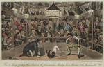 Dog Fight: Westminster