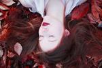 Seasons -Fall by Sunny Tran