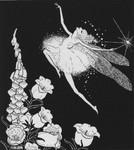 De la Mare, Walter Down-a-Down-Derry Fairy & Foxglove